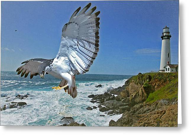 Pigeon Lighthouse Greeting Card by Jeff Burgess