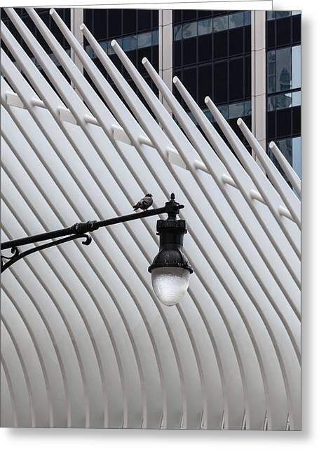Pigeon On Lamppost Near Oculus Center Nyc Greeting Card by Robert Ullmann