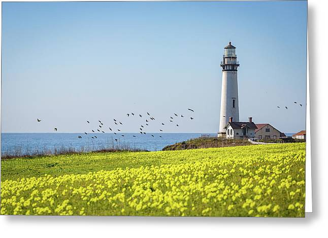 Pigeon Point Light Station Historic Park Greeting Card