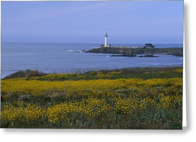 Pigeon Point Lighthouse Greeting Card by Soli Deo Gloria Wilderness And Wildlife Photography