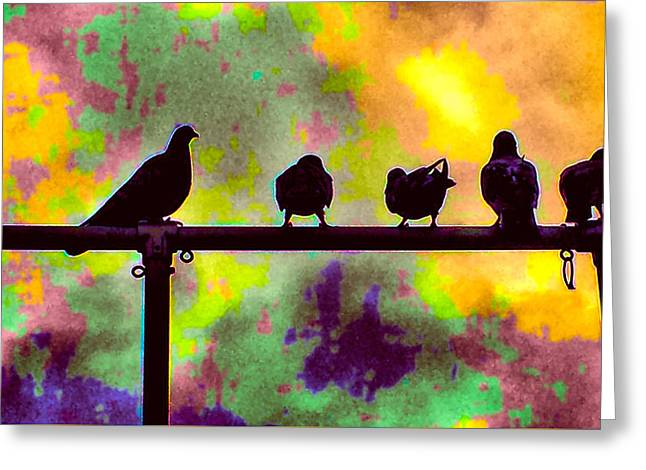 Pigeons In Abstract 2 Greeting Card