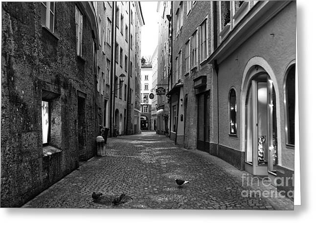 Pigeons On The Street In Salzburg Greeting Card by John Rizzuto