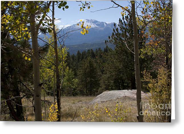 Greeting Card featuring the photograph Pikes Peak Framed Aspens Landscape by Marta Alfred