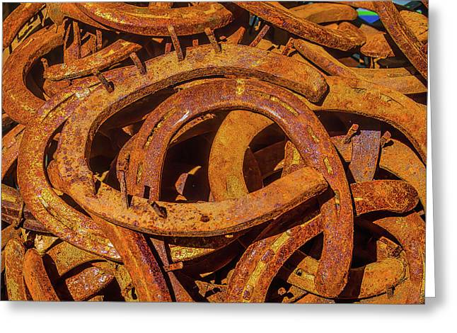 Pile Of Rusty Horseshoes Greeting Card