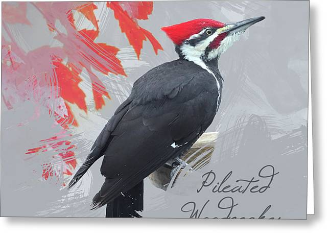 Pileated Woodpecker Watercolor Photo Greeting Card