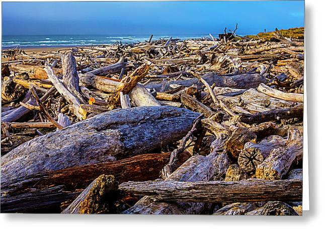 Piles Of Driftwood On Beach Greeting Card by Garry Gay