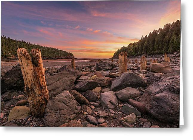 Pilings At Point Wolfe Greeting Card
