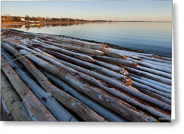 Pilings Greeting Card by Robert Lacy