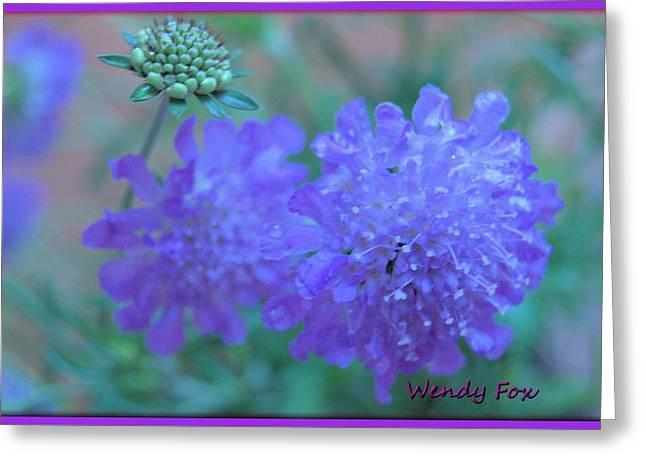 Pin Cushion Flower Greeting Card by Wendy Fox