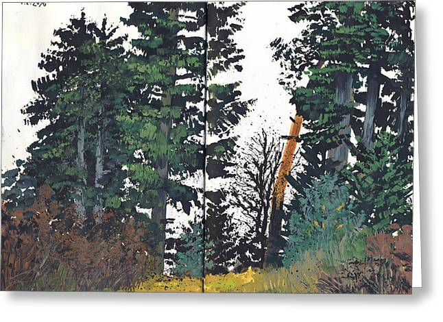 Pine And Fir Tree Forest Greeting Card by Martin Stankewitz