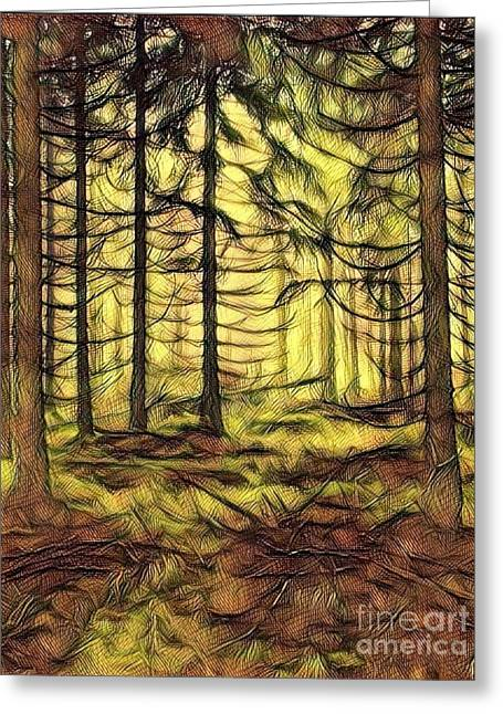 Pine Forest At Sunset Greeting Card