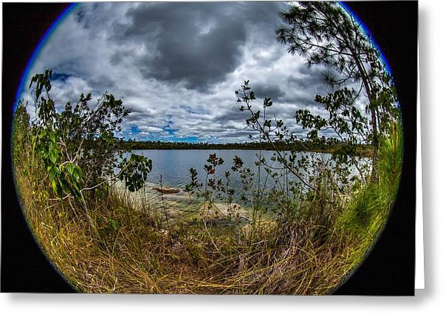 Pine Glades Lake 18 Greeting Card by Michael Fryd