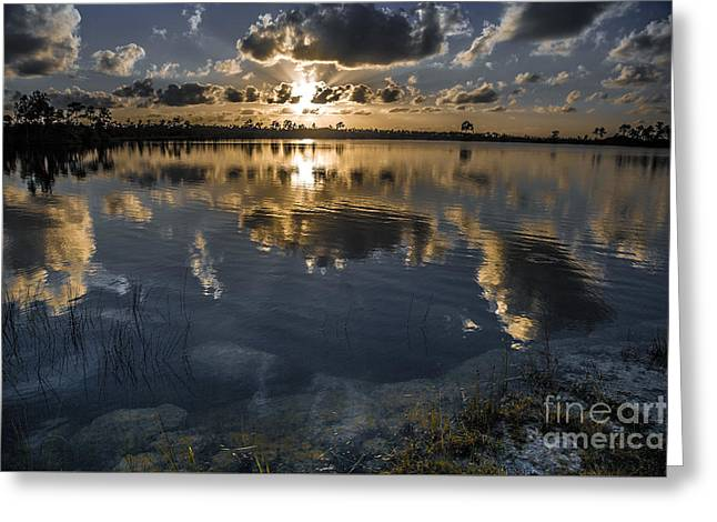 Pine Glades Lake Greeting Card