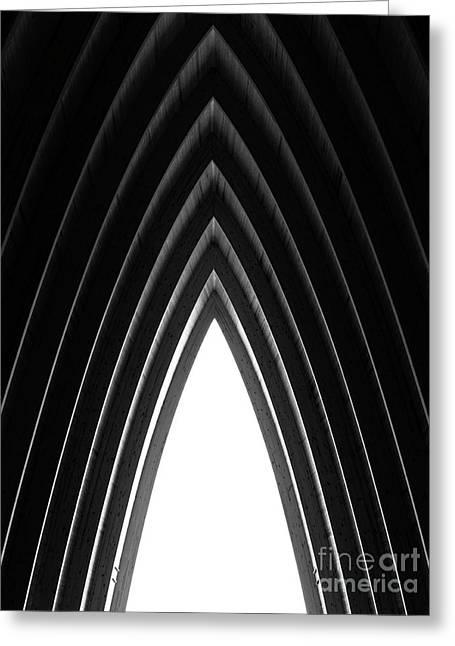 Pine Greeting Card by Tapio Koivula