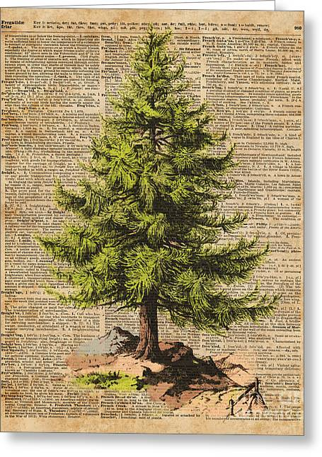 Pine Tree,cedar Tree,forest,nature Dictionary Art,christmas Tree Greeting Card by Jacob Kuch