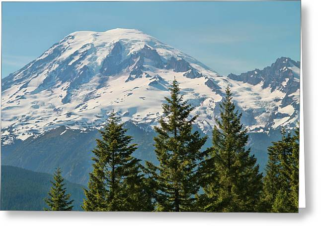 Pine Trees And Mount Rainier  Greeting Card by Dan Sproul