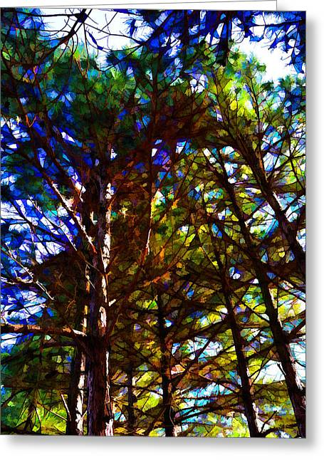 Pine Trees In Abstract 1 Greeting Card
