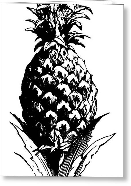 Pineapple Print Greeting Card