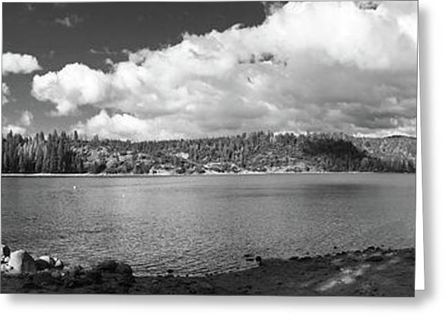 Pinecrest Panorama Black And White Greeting Card by Sierra Vance