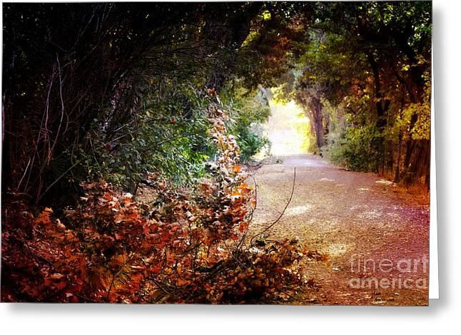 Piner Creek Path Greeting Card