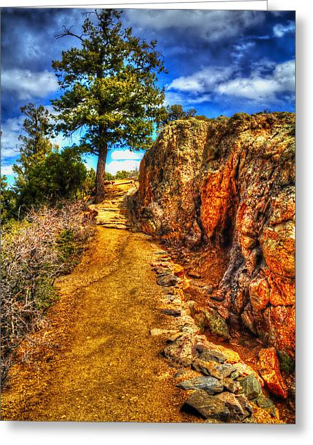 Ponderosa Pine Guarding The Trail Greeting Card