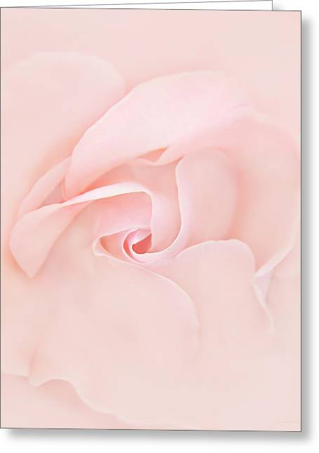 Pink Abstract Rose Flower Greeting Card by Jennie Marie Schell