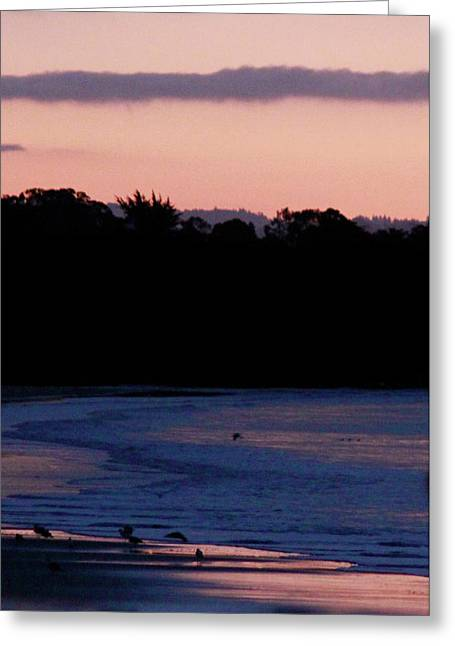 Pink And Blue Bay Greeting Card