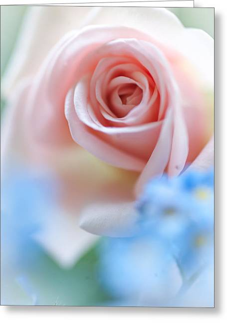 Pink And Blue Greeting Card by Jenny Rainbow