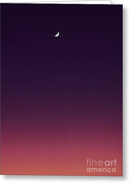 Pink And Purple Sunset Greeting Card by Carl Shaneff - Printscapes