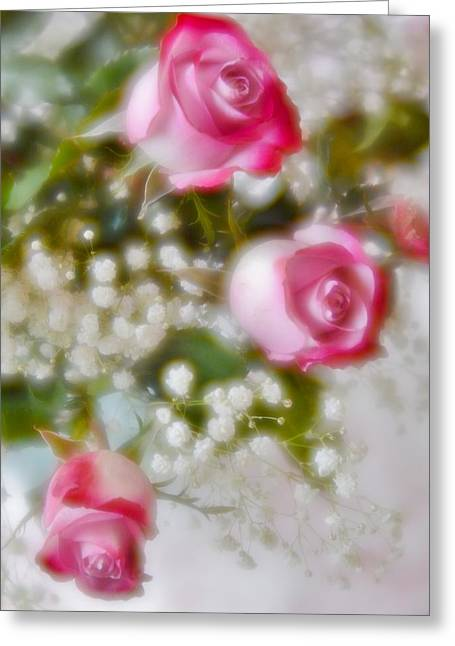 Greeting Card featuring the photograph Pink And White Rose Bouquet by Diane Alexander