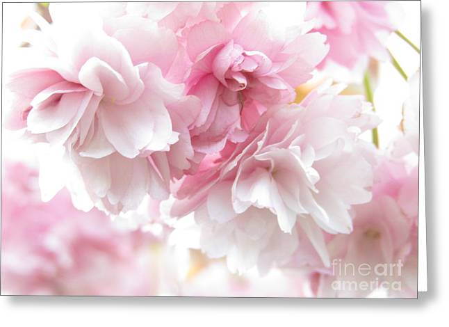 Pink April Greeting Card by Kim Tran