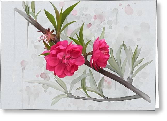 Hot Pink Blossom Greeting Card