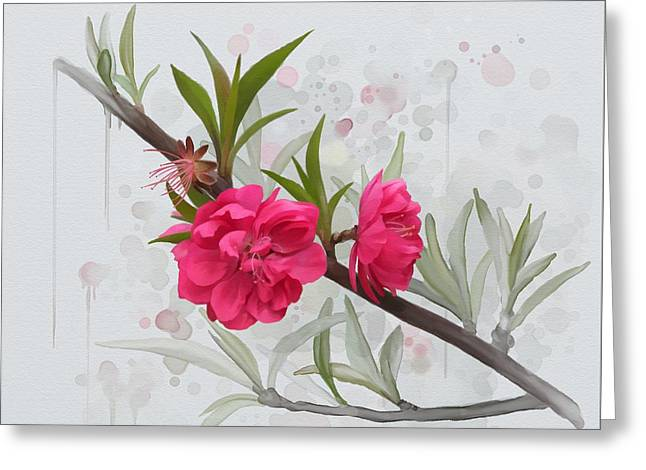 Hot Pink Blossom Greeting Card by Ivana Westin