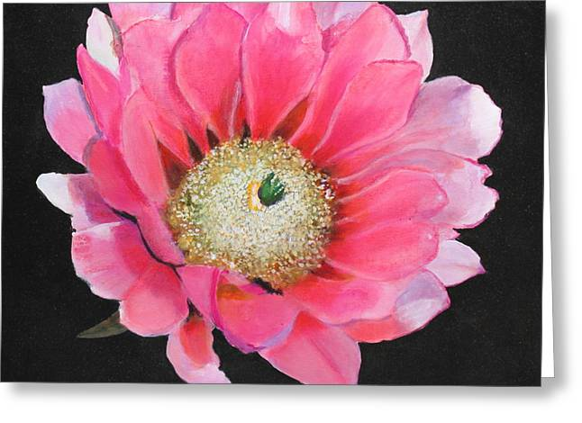 Greeting Card featuring the painting Pink Cactus Flower by M Diane Bonaparte