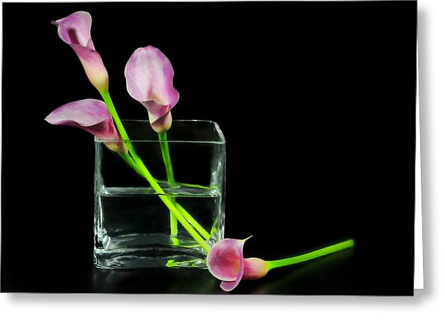 Pink Callas Greeting Card by Diana Angstadt