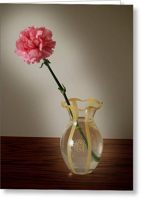 Pink Carnation Greeting Card by Dave Chafin
