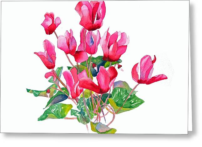 Pink Cyclamen Greeting Card