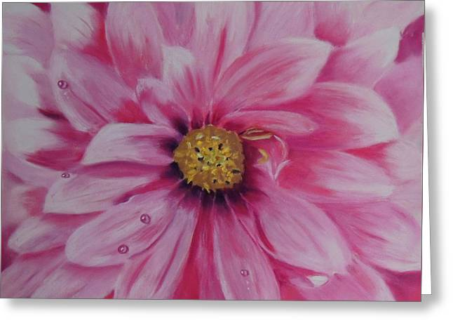 Pink Dahlia I Greeting Card