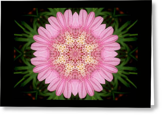Pink Daisy Kaleidoscope Greeting Card by Nancy Pauling