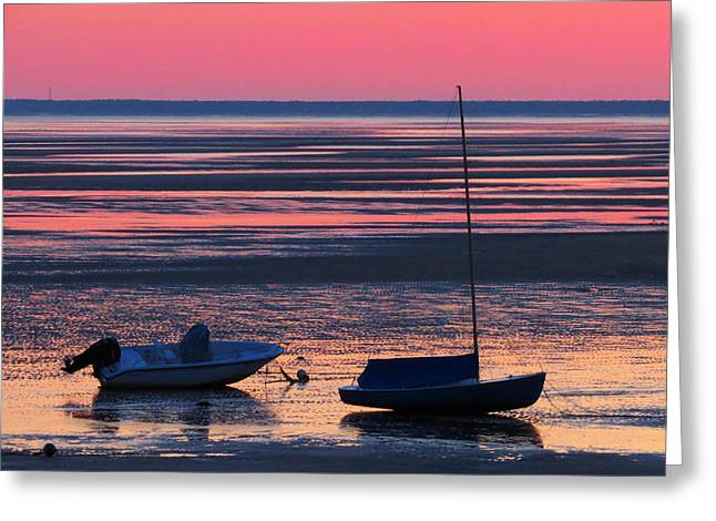 Greeting Card featuring the photograph Pink Dawn by Dianne Cowen