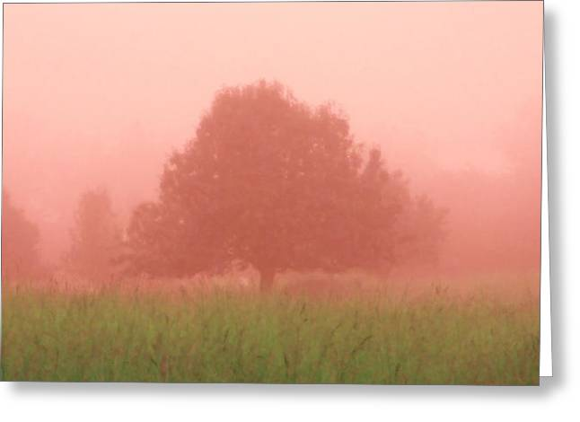 Pink Dawn Greeting Card