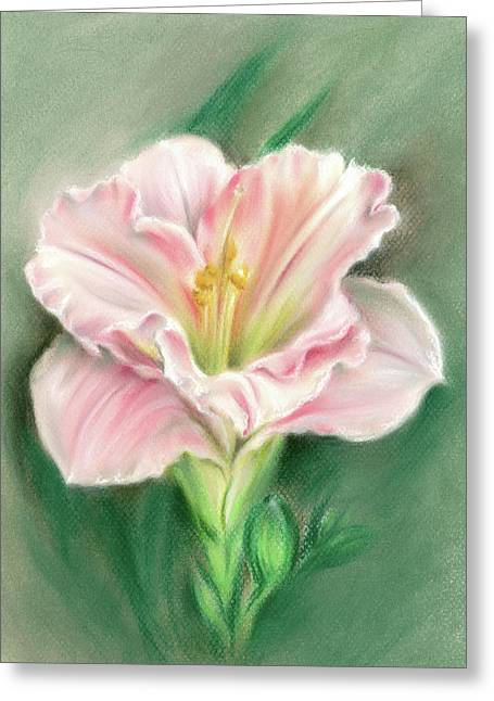 Pink Daylily And Green Buds Greeting Card