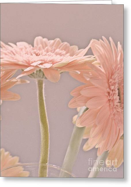 Pink Dreams Greeting Card
