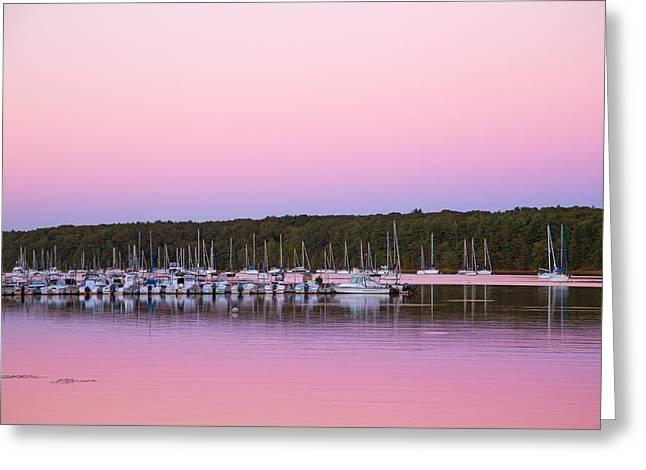 Pink Evening Greeting Card by Karol Livote