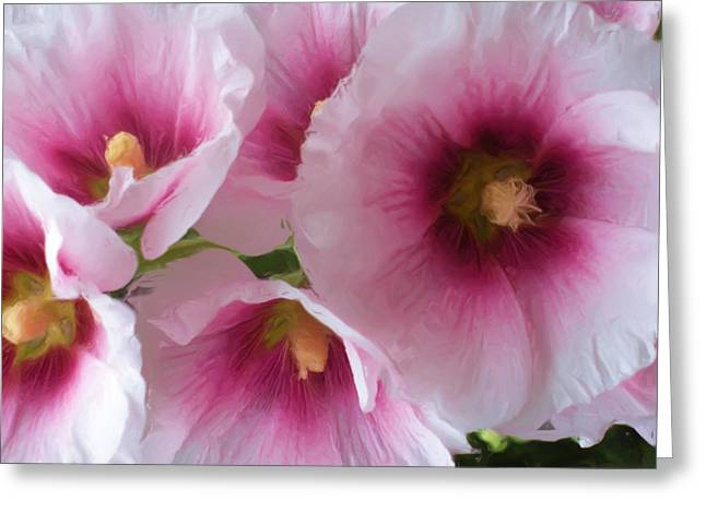 Still Life Photographs Paintings Greeting Cards - Pink-faced Hollyhocks Greeting Card by Liz Evensen
