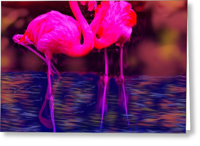 Pink Flamingos  Greeting Card by Diana Riukas