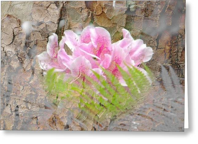 Greeting Card featuring the photograph Pink Flower Bark by Amanda Eberly-Kudamik