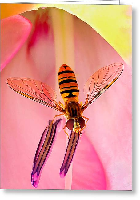 Pink Flower Fly Greeting Card