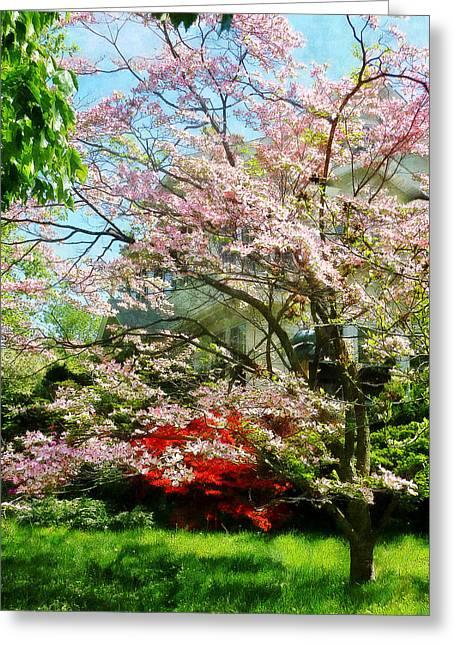 Pink Flowering Dogwood Greeting Card by Susan Savad