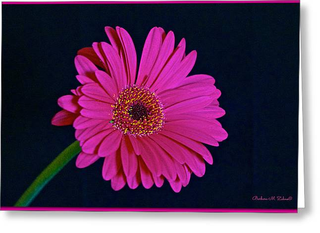 Pink Gerbera Greeting Card by Barbara Zahno